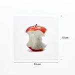 Food Flashcards Size Product Image