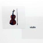 Violen Flashcards (Front & Back) Product Image