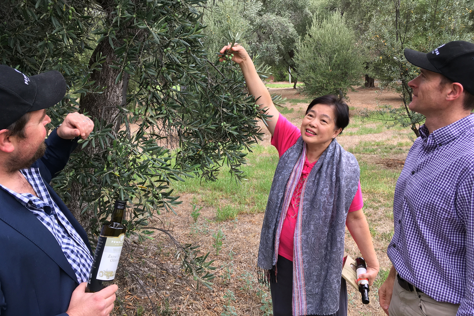 khgeok - Leong Geok Hoon (middle) with Clint Wylie (left) and Nick Whiting from Pendleton Fine Foods. They're standing next to an olive tree which is more than 100 years old. Geok retails many Pendleton products including fresh Lemon Pressed Extra Virgin Olive Oil on her website.##########khgeok##########COURTESY OF LEONG GEOK HOON