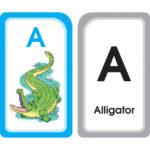 A for Alligator Alphabet Flash Cards Product Image - AutismSTEP