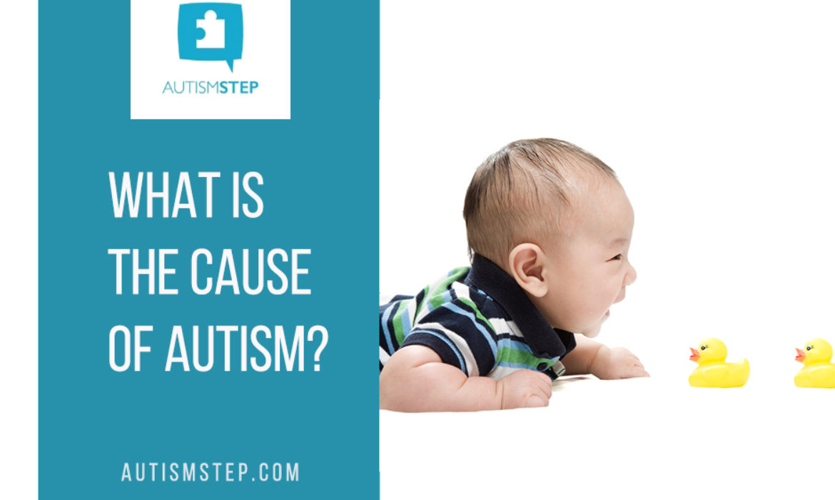What is the cause of autism? – AutismSTEP
